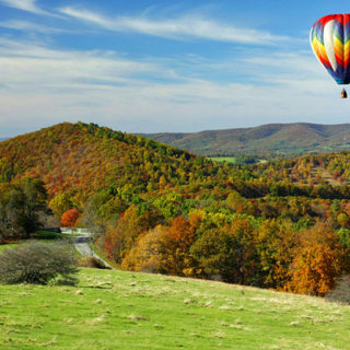 8 Top-Rated Things to do in Charlottesville, Virginia