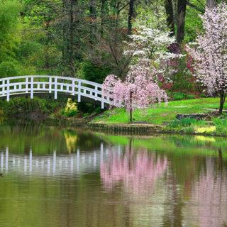 Romantic North Carolina Getaways