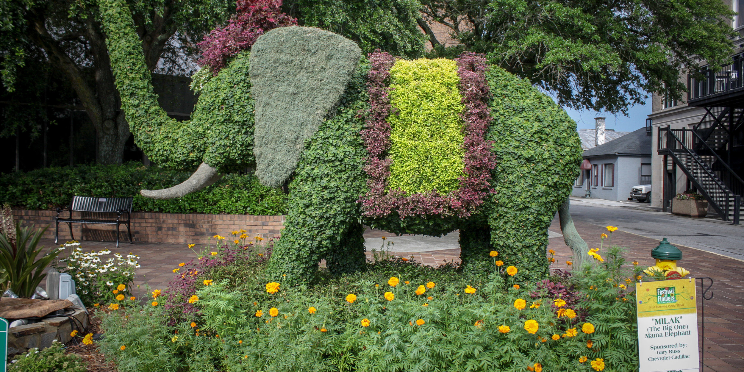 SOUTH CAROLINA OLD 96 DISTRICT TOURISM – Festival of Flowers